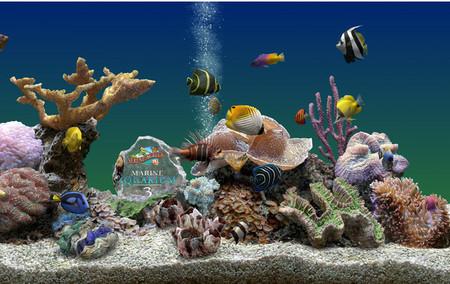 壁纸 海底 海底世界 海洋馆 水族馆 450_284